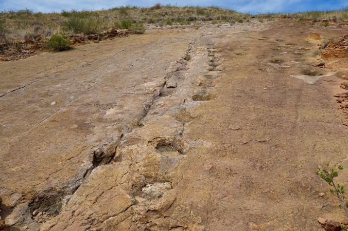 torotoro dinosaur footprints
