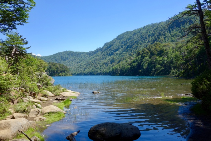 huerquehue lago verde